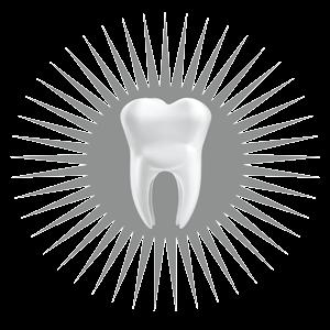 EADG tooth 1@2x